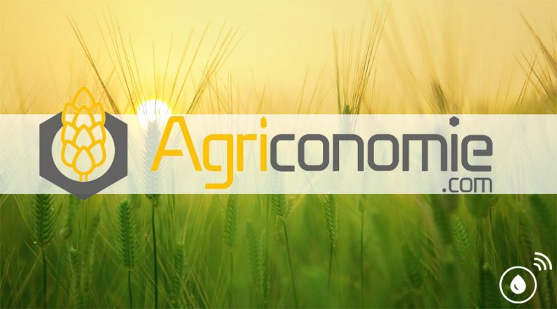 fuel-it-koop-in-agriconomie.com